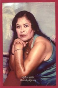 Mercedes  Gomez Martinez