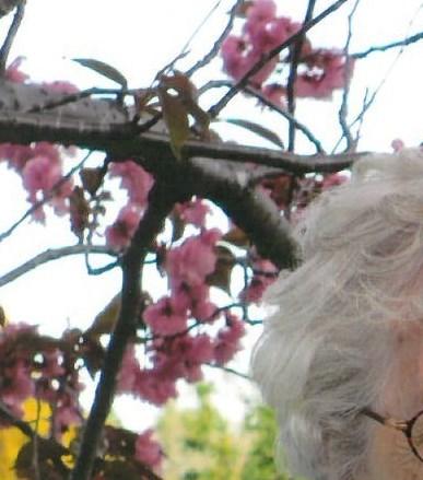Dorothy Marie  Clarke