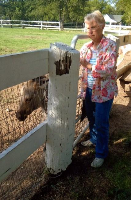 Lora Lee Cox Obituary - Frisco, TX