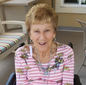 Carol Ann  Taplin