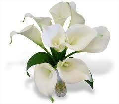Shirley Jean Spangler Harju Obituary - Greenville, SC